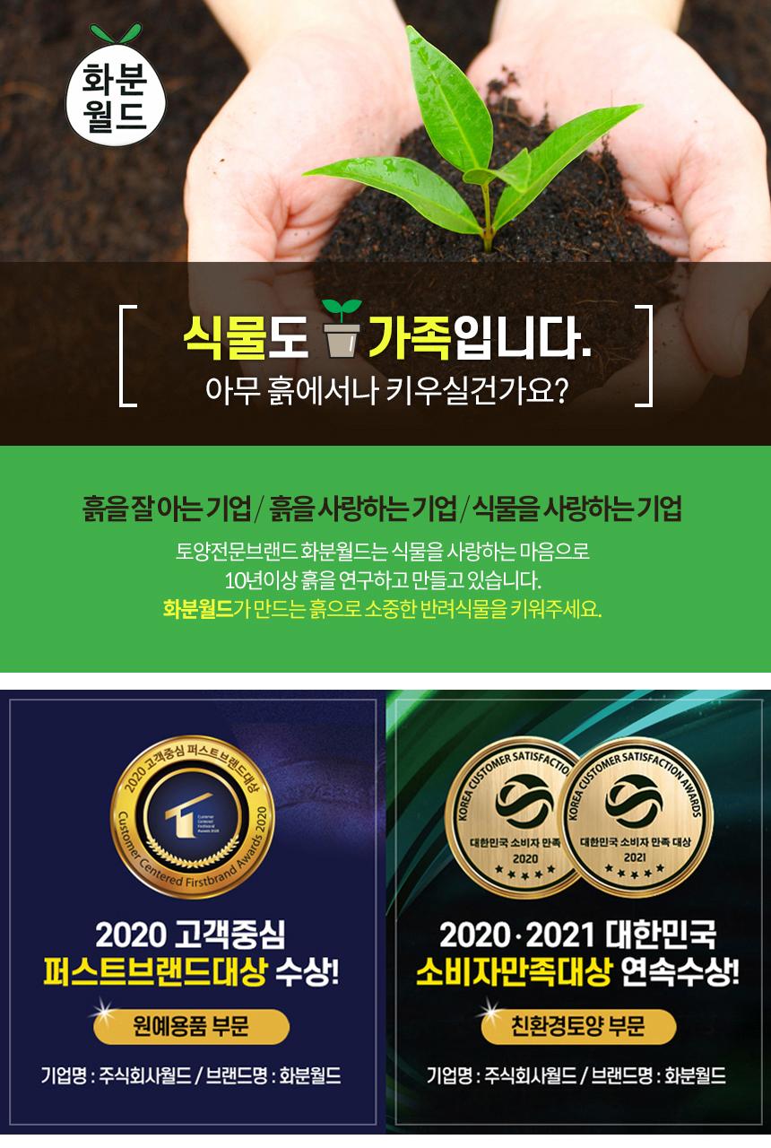 화분월드 녹소토6L (중포장) - 화분월드, 8,400원, 새싹/모종키우기, 흙/비료/영양제