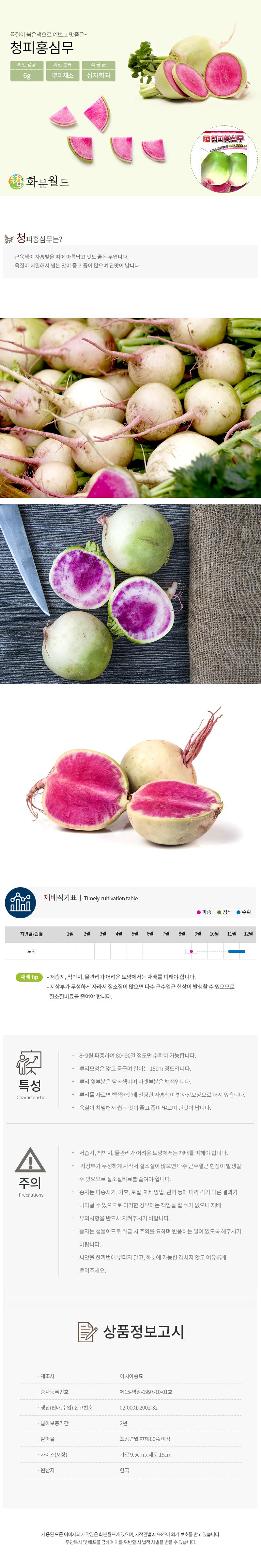 화분월드 청피홍심무 씨앗 (500립) - 화분월드, 1,900원, 새싹/모종키우기, 씨앗